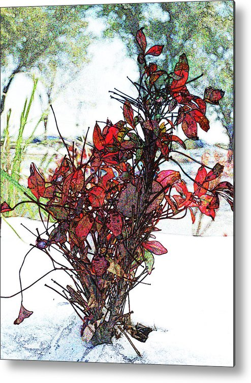 Red Leaves In Winter Metal Print featuring the digital art Red For The Winter by James Granberry