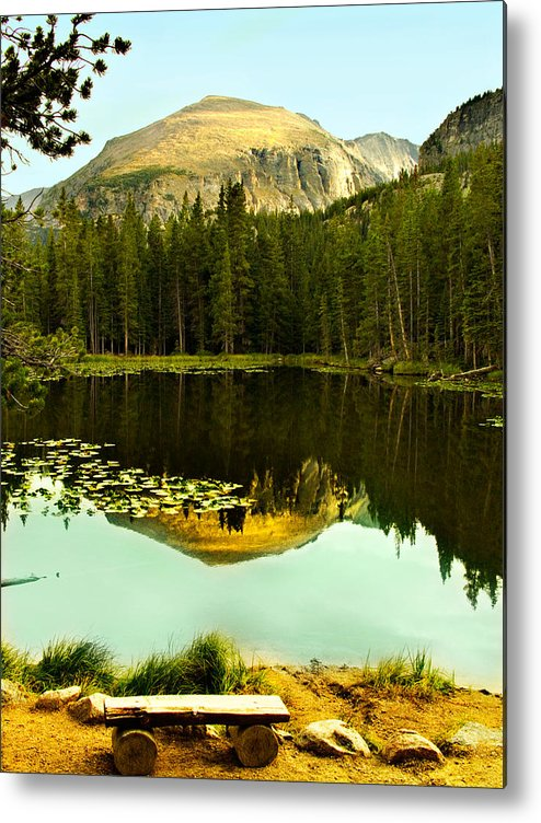 Reflection Metal Print featuring the photograph Reflection by Marilyn Hunt