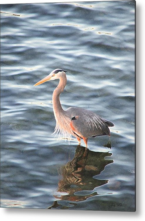 Bird Metal Print featuring the photograph Reflections In The Water by Judy Waller