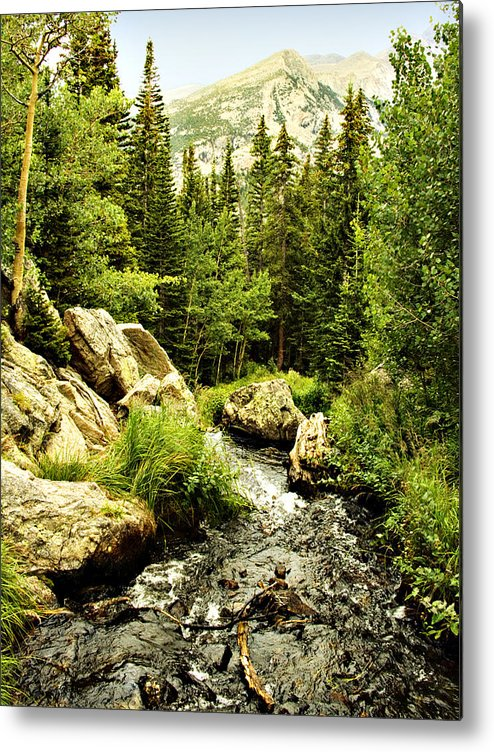 Colorado Metal Print featuring the photograph Running River by Marilyn Hunt