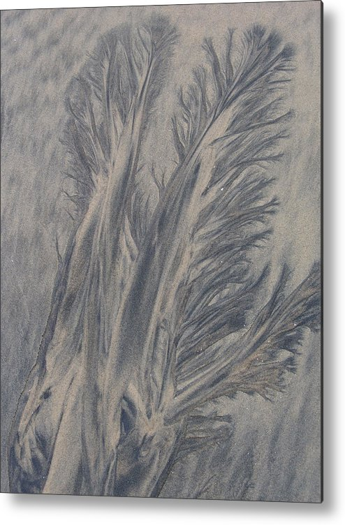 Sand Metal Print featuring the photograph Sand Drawing 1 by Kevin Callahan
