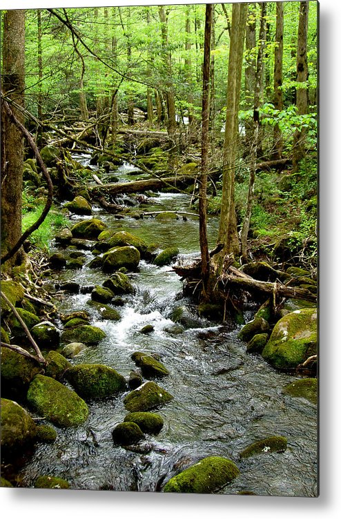 River Metal Print featuring the photograph Smoky Mountain Stream 2 by Nancy Mueller