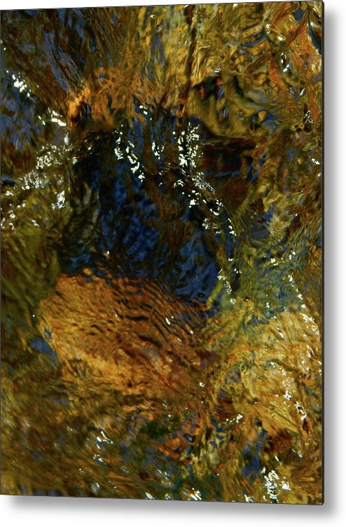 Color Close-up Landscape Metal Print featuring the photograph Spring 2017 159 by George Ramos