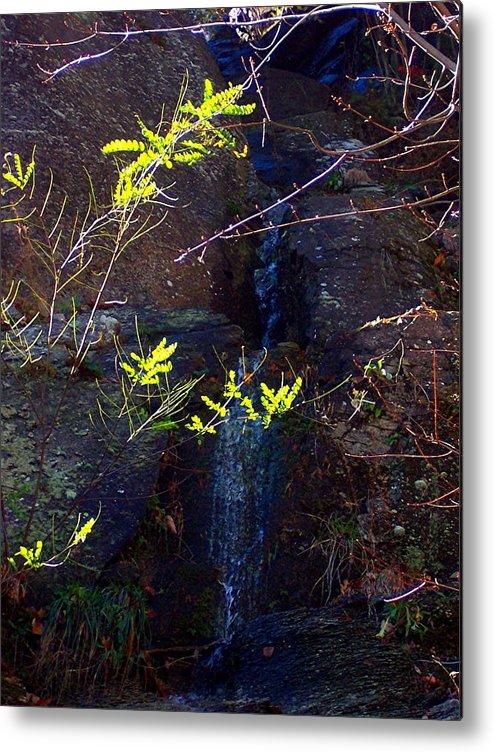 Spring Metal Print featuring the photograph Spring Cascade by Caroline Urbania Naeem