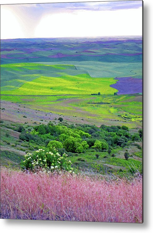 Landscape Metal Print featuring the photograph Steptoe Butte by Margaret Hood