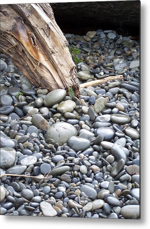 Stones Metal Print featuring the photograph Stones by Gene Ritchhart