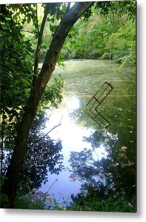 Pond Metal Print featuring the photograph The Pond by Scarlett Royal