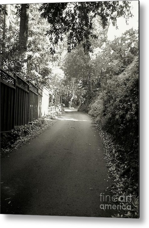 Road Metal Print featuring the photograph The Road To Nowhere Or Is It by Amy Delaine