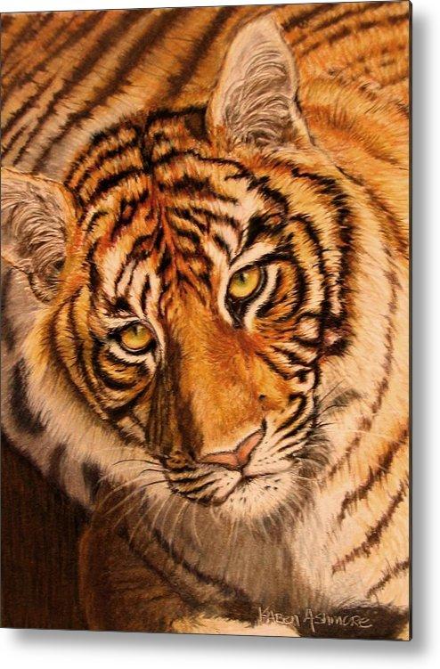 Tiger Metal Print featuring the drawing Tiger by Karen Ilari