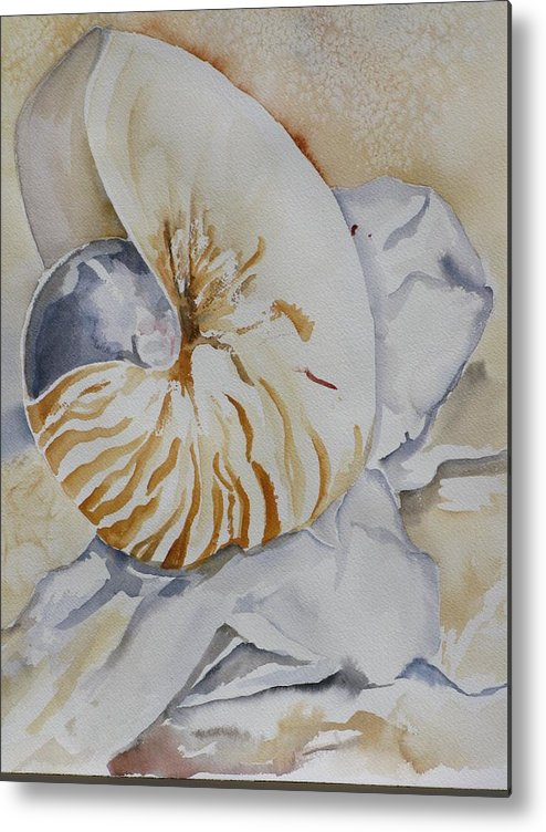 Still Life Metal Print featuring the painting Tiger Nautilus by Kathy Mitchell