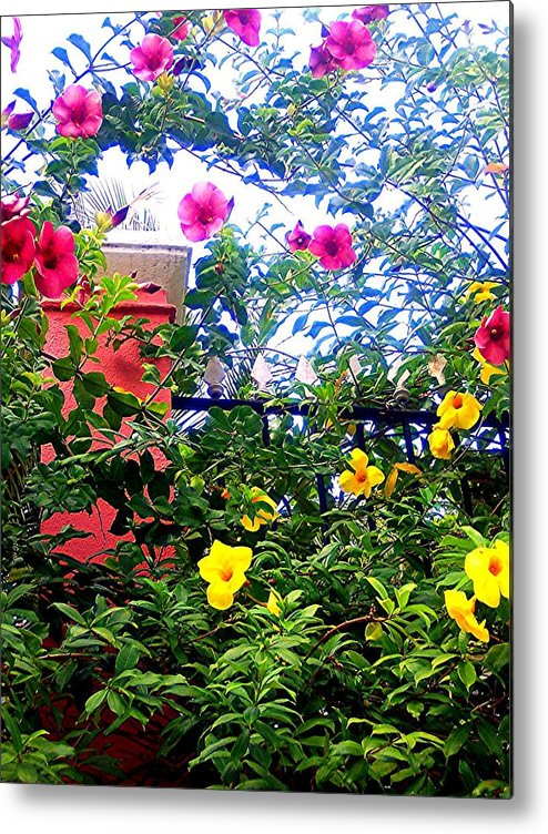Flowers Metal Print featuring the photograph Tropical Flower Branches by Caroline Urbania Naeem