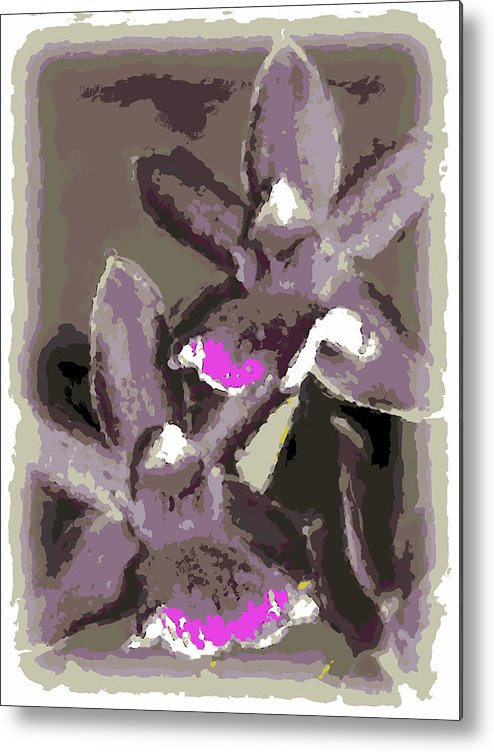 Orchid Metal Print featuring the photograph Two Orchids by Ann Tracy