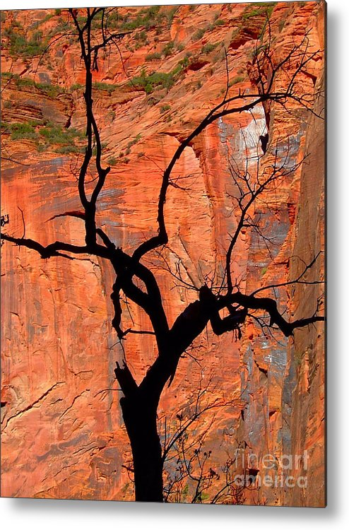 Cliff Metal Print featuring the photograph Wall Of Fire by Carl Jackson