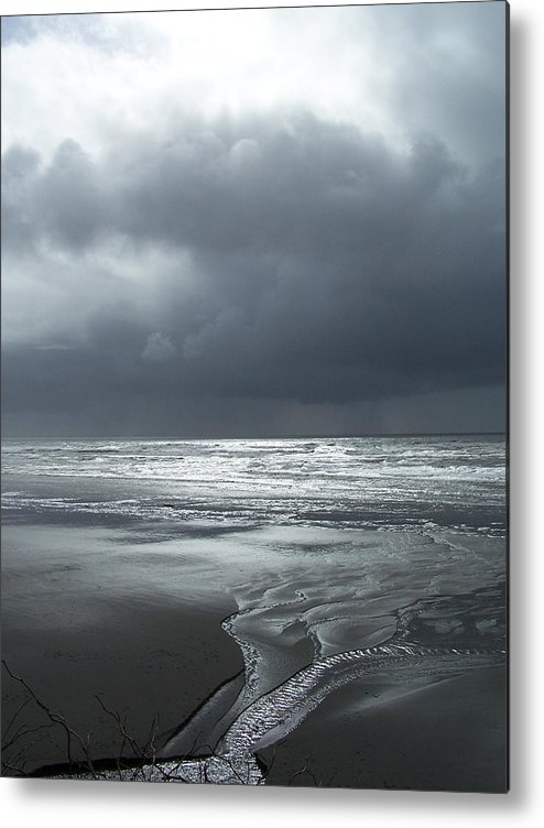 Seascape/ Beach/sunset Metal Print featuring the photograph Washington Shore by Gene Ritchhart