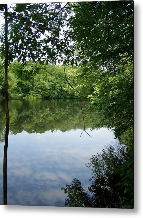 White Mill Park Metal Print featuring the photograph White Mill Park - Summer 2 by Erin Rosenblum