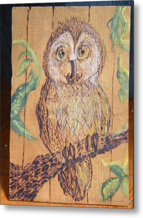 Owls Woodburns Nature Metal Print featuring the pyrography Whooooo Me by Margaret G Calenda
