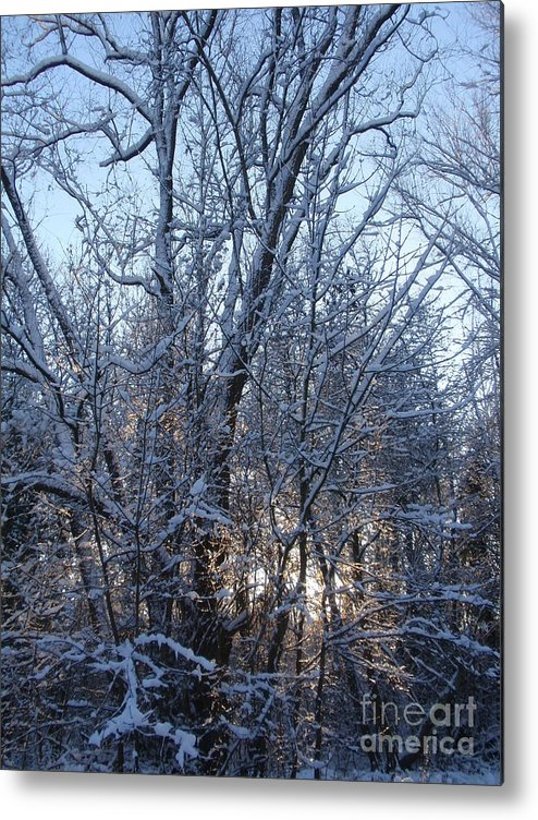 Nature Metal Print featuring the photograph Winter Sunset by Valia Bradshaw