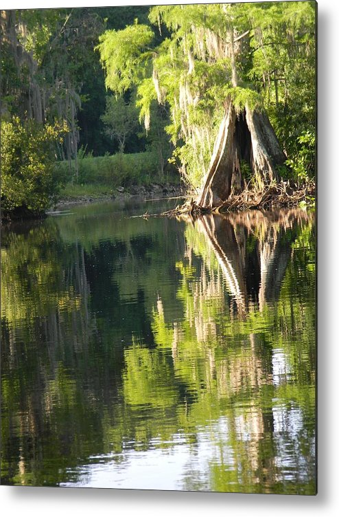 Withlacoochee Cypress Reflections Metal Print featuring the photograph Withlacoochee Cypress Reflections by Warren Thompson