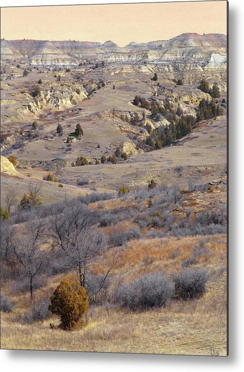 North Dakota Metal Print featuring the photograph Burning Coal Vein April Reverie by Cris Fulton