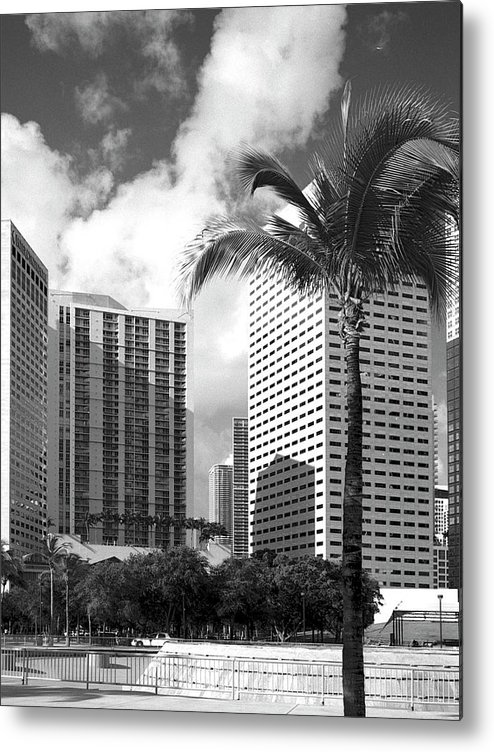 Park Metal Print featuring the photograph Miami Downtown 071903 by Rudy Umans