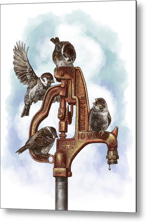 Birds Metal Print featuring the drawing Talk Around The Watercooler by Clint Hansen