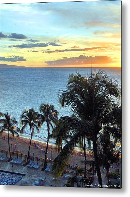 Palm Tree Metal Print featuring the photograph Resort Sunset by Nicole I Hamilton