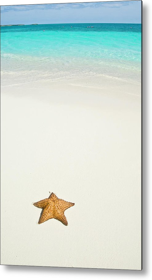 Vertical Metal Print featuring the photograph Tropical Beach And Starfish by Mehmed Zelkovic