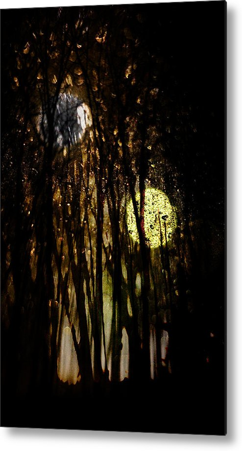 Digital Photography Metal Print featuring the photograph Evon 3 by Tony Wood