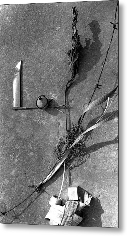 Still Life Metal Print featuring the photograph Still Forms by Ted M Tubbs
