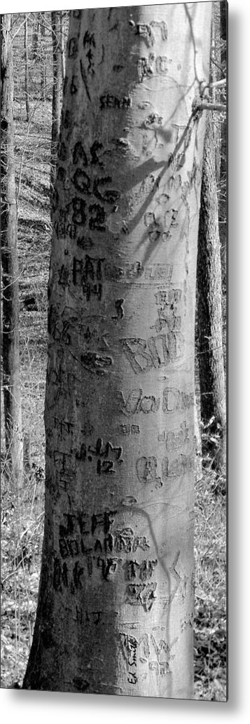 American Metal Print featuring the photograph American Graffiti 5 Tattoos For Trees by Edward Smith