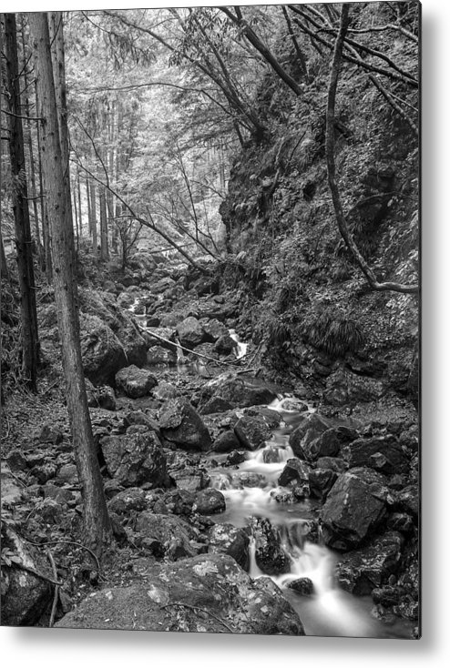Metal Print featuring the photograph Akigawa Valley Stream by Ronald Steiner