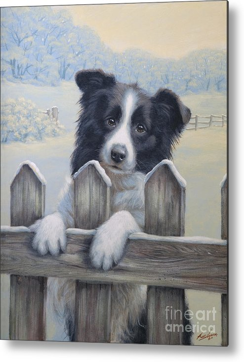 Dog Paintings Metal Print featuring the painting Ready For Work by John Silver