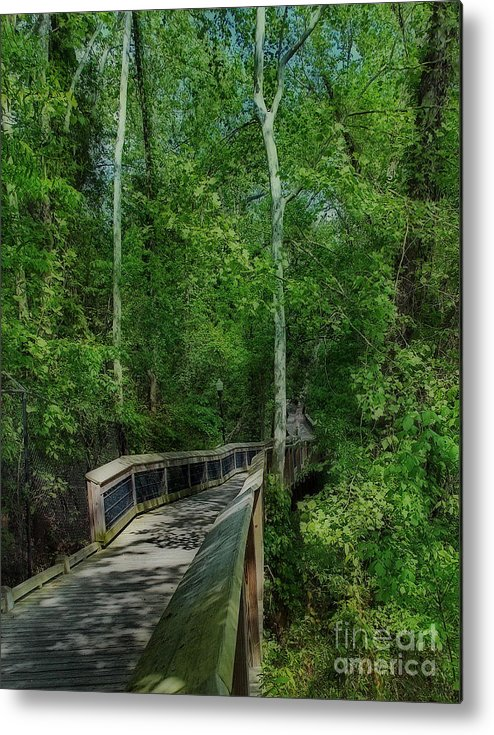 Scenic Tours Metal Print featuring the photograph Riverwalk by Skip Willits