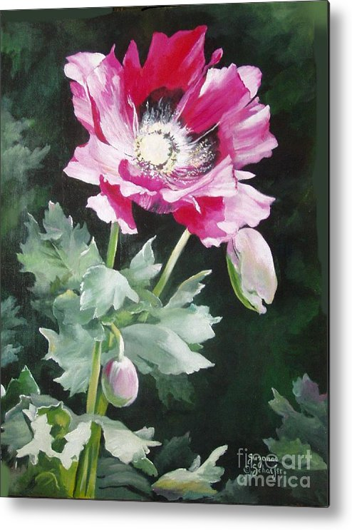 Poppy Metal Print featuring the painting Shining Star Poppy by Suzanne Schaefer