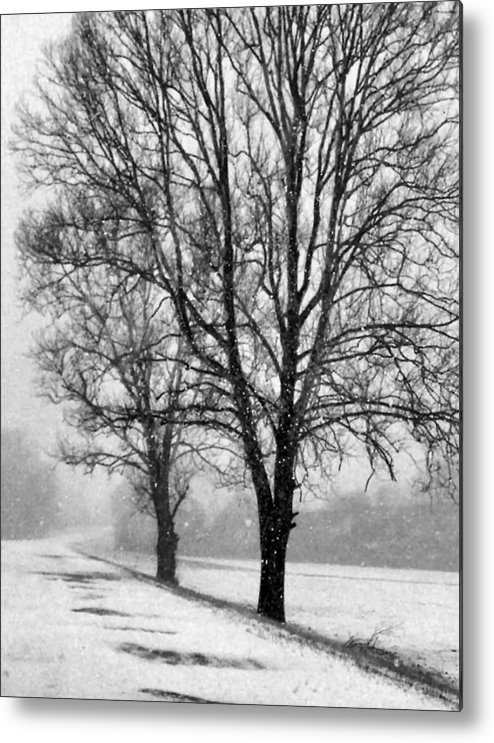 Indiana Metal Print featuring the photograph Slow Going I by Julie Dant