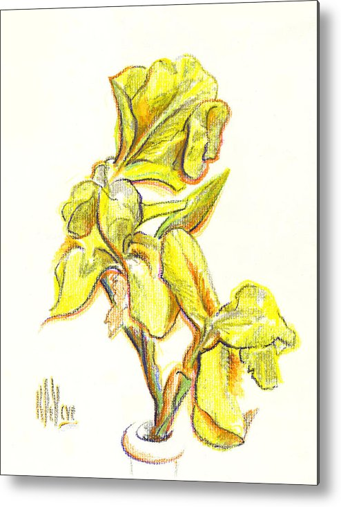 Spanish Irises Metal Print featuring the painting Spanish Irises by Kip DeVore