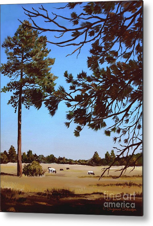 Scene Metal Print featuring the painting Summer Serenity by Suzanne Schaefer