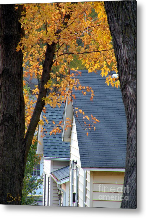 Autumn Metal Print featuring the photograph Autumn In America by Christine Belt