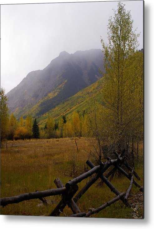 Colorado Metal Print featuring the photograph Along The Alpine Loop by Marty Koch