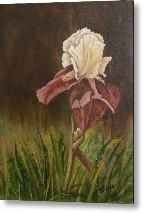 Floral Metal Print featuring the painting Flaming Bearded Iris by Barbara Harper
