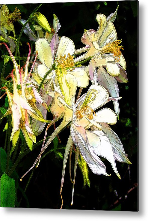 Flowers Metal Print featuring the digital art Flower St by John Toxey