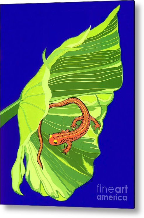 Nature Metal Print featuring the drawing Salamander by Lucyna A M Green
