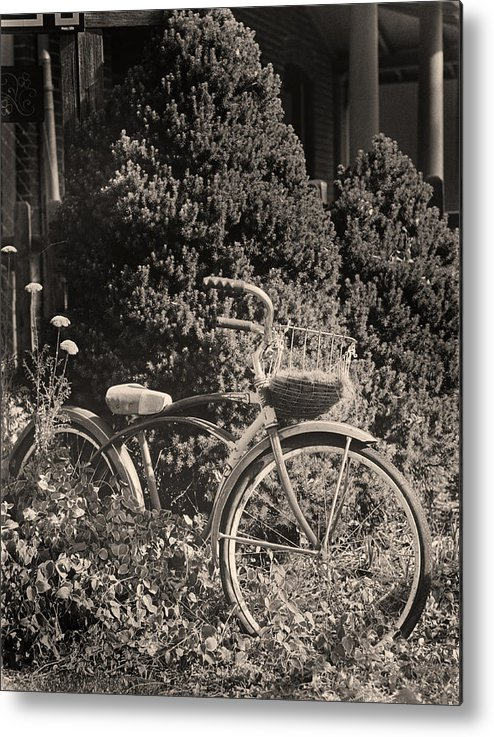 Bike Metal Print featuring the photograph The Bicycle Garden II by Jim Furrer