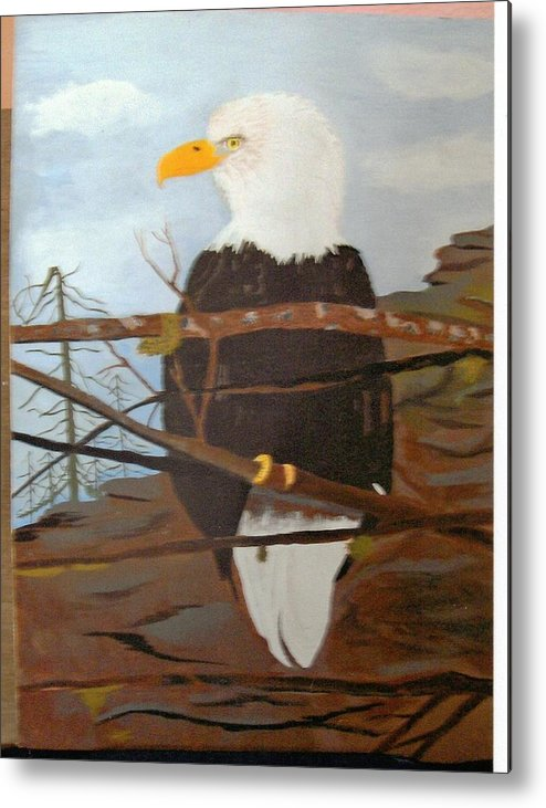 Eagle Metal Print featuring the painting Watchful Eagle by Juanita Couch