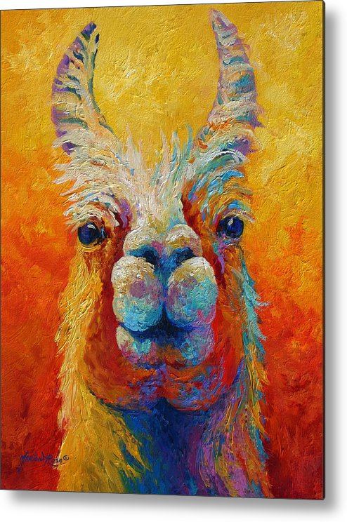 Llama Metal Print featuring the painting You Lookin At Me by Marion Rose
