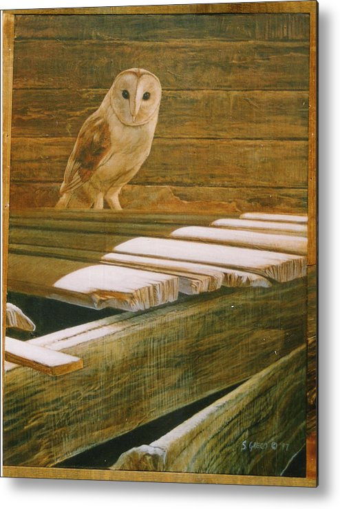 Wildlife Metal Print featuring the painting Barn Owl by Steve Greco