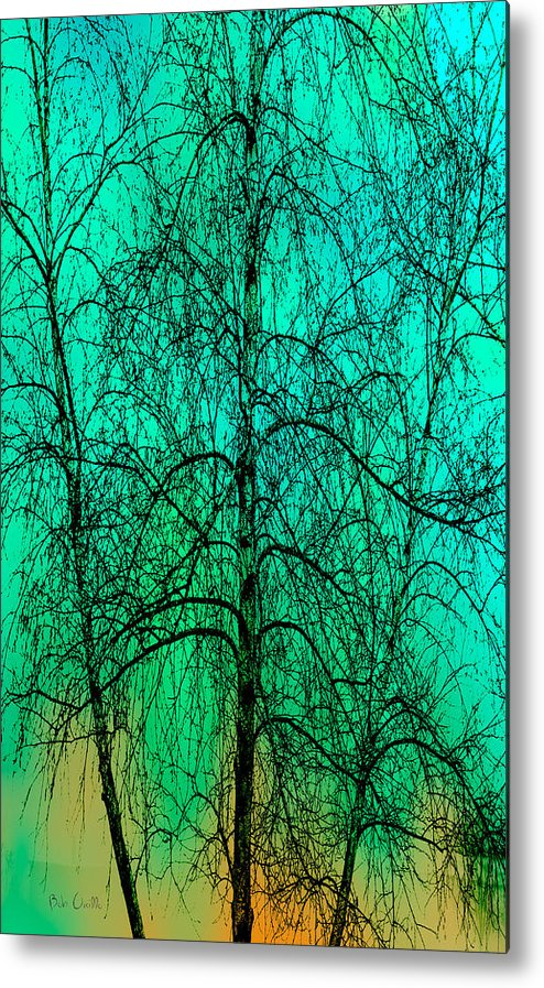 Abstract Metal Print featuring the photograph Change Of Seasons by Bob Orsillo