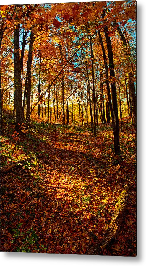 Horizons Metal Print featuring the photograph Paths Home by Phil Koch