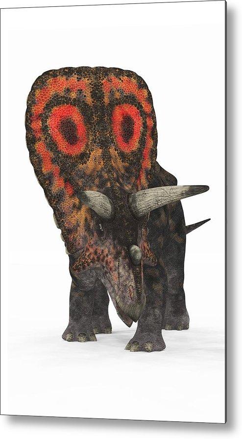 Torosaurus Metal Print featuring the photograph Torosaurus Dinosaur by Walter Myers