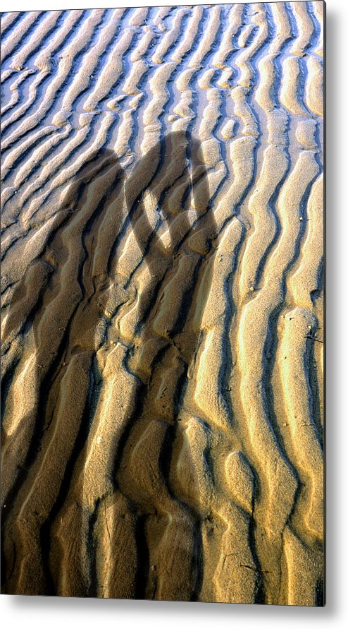 Metal Print featuring the photograph Shadows 01 by Victor Yekelchik